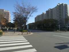 都営大江戸線光が丘駅からシェアハウスへ向かう道の様子。(2007-11-22,共用部,ENVIRONMENT,1F)