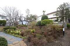 庭の様子。(2015-03-16,共用部,OTHER,1F)