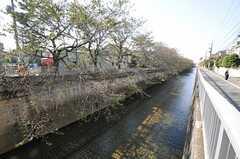 シェアハウス近くに流れる川。(2013-10-31,共用部,ENVIRONMENT,1F)