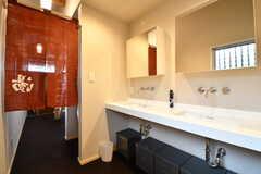 洗面台が2台並んでいます。(2019-01-25,共用部,WASHSTAND,1F)