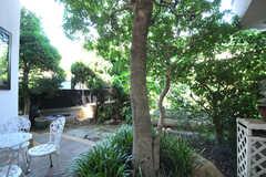 庭の様子。奥に畑があります。(2013-09-02,共用部,LIVINGROOM,1F)