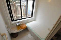 バスルームの様子。(2013-09-02,共用部,BATH,2F)