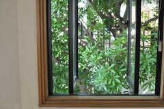 窓の外は、庭の緑でいっぱいです。(205号室)(2013-09-02,専有部,ROOM,2F)