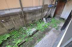 庭の様子。(101号室)(2013-04-15,専有部,ROOM,1F)
