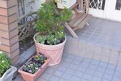 玄関周りには植物が植えられています。(2015-02-12,周辺環境,ENTRANCE,1F)