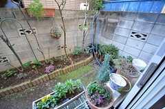 庭の様子。(2015-02-12,共用部,OTHER,1F)