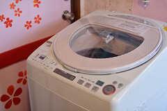 洗濯機の様子。(203・204号室専用)(2017-03-15,共用部,LAUNDRY,2F)