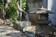 庭の片隅には燈籠もあったり。(2013-06-04,共用部,OTHER,1F)