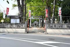 近くには緑のきれいな神社があります。(2021-04-08,共用部,ENVIRONMENT,1F)