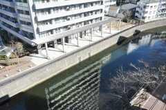 屋上からの景色。(2010-02-05,共用部,OTHER,6F)