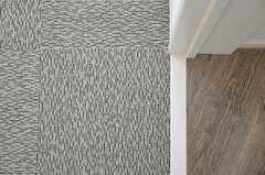 床はカーペット敷きです。(203号室)(2012-09-12,専有部,ROOM,2F)