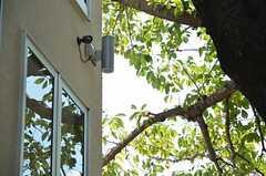 窓の上には、防犯カメラも付いています。(2012-09-12,共用部,OTHER,1F)
