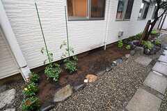 玄関脇は家庭菜園として利用されています。(2016-07-21,共用部,OTHER,1F)