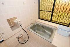バスルームの様子。(2010-06-15,共用部,BATH,1F)