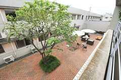ベランダから中庭が眺められます。(233号室)(2013-09-09,専有部,ROOM,2F)