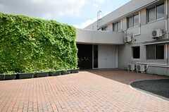 エントランスにはゴーヤのグリーンカーテンがありました。(2013-09-09,共用部,OUTLOOK,1F)