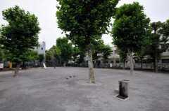 シェアハウスのすぐ近くには公園もあります。(2010-07-08,共用部,ENVIRONMENT,1F)