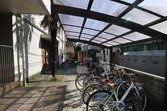 屋根付きの自転車置き場の様子。(2014-03-24,共用部,GARAGE,1F)