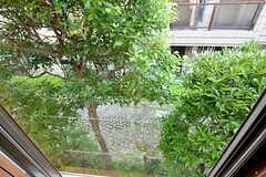 窓からは緑が見えます。(205号室)(2015-07-29,専有部,ROOM,2F)