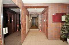 マンションのエントランス・ホール。エレベーターで3Fへ。(2010-03-03,周辺環境,ENTRANCE,1F)