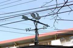 ゴミ置き場の屋根には、風見鶏。(2010-03-03,共用部,OTHER,1F)