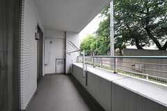 ベランダの様子。203号室と共用です。l(204号室)(2012-06-19,専有部,ROOM,2F)