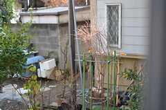 リビングの掃き出し窓を開けると、お隣さんの庭があります。野鳥の餌付けをしているので、小鳥のさえずりが聞こえてきます。(2013-02-07,共用部,OTHER,1F)