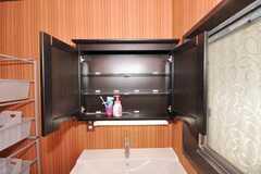 歯ブラシなどは、鏡の裏に保管できます。(2009-11-06,共用部,OTHER,1F)