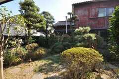 専有部の様子3。専用庭付き。(103号室)(2009-11-06,専有部,ROOM,1F)