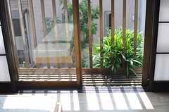 窓から庭の緑が見えます。(203号室)(2014-06-26,専有部,ROOM,2F)