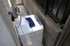 ねこ用洗濯機の様子。(2012-05-21,共用部,LAUNDRY,1F)
