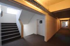 廊下の様子。(2011-03-11,共用部,OTHER,2F)