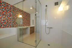 バスルーム内のシャワー。(2011-03-11,共用部,BATH,3F)