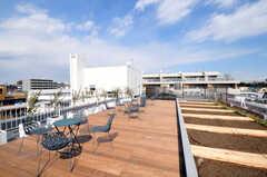 屋上の様子2。菜園付きです。(2011-03-11,共用部,OTHER,5F)