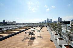 屋上の様子3。広がりのある気持ちの良い景色。(2011-03-11,共用部,OTHER,5F)
