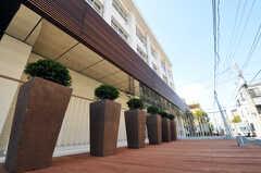 正面玄関脇にもウッドデッキの敷かれたスペースがあります。(2011-03-11,共用部,OTHER,1F)