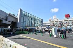 各線・下北沢駅の様子。(2019-03-14,共用部,ENVIRONMENT,1F)