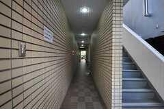 マンションの共用廊下の様子。(2011-10-04,共用部,OTHER,1F)