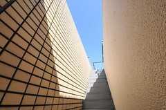屋上へ向かう階段の様子2。(2011-10-04,共用部,OTHER,5F)