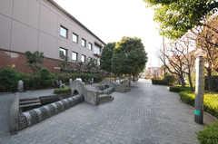 東急田園都市線・用賀駅からシェアハウスへ向かう道の様子2。(2011-01-28,共用部,ENVIRONMENT,1F)