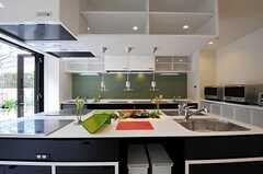 キッチンはアイランド式。中央には植物も置かれています。(2012-03-14,共用部,KITCHEN,1F)