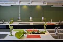 作業スペース中央には植物が植えられています。将来的にはハーブを育てる予定とのこと。(2012-03-14,共用部,KITCHEN,1F)