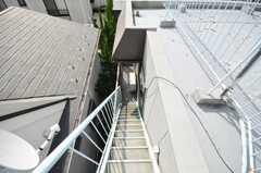 屋上への階段。(2009-10-12,共用部,OTHER,3F)