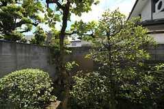 窓から眺めた庭の様子。(104号室)(2011-09-15,専有部,ROOM,1F)