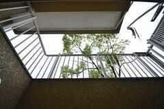テラスから上を見上げるとこんな感じ。高台なので、1階が地下のようになっています。(101号室)(2015-07-02,専有部,ROOM,1F)