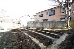 庭の様子。とても広い敷地です。(2016-02-26,共用部,OTHER,1F)