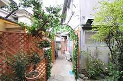 緑のアーチ。門扉が設置される予定とのこと。(2011-03-23,周辺環境,ENTRANCE,1F)