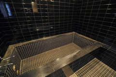 浴槽の様子。(2013-11-07,共用部,BATH,1F)