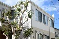 敷地内には物件名の由来となる、柿の木が植栽されています。(2013-10-16,共用部,OTHER,1F)