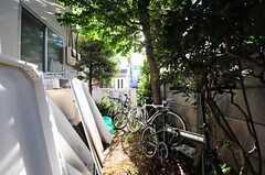 自転車置場の様子。  (2011-12-13,共用部,OTHER,2F)